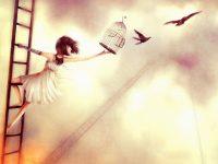 Свобода и счастье